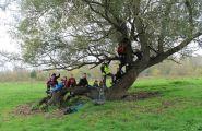 Découvrir l'environnement des bords de Loire